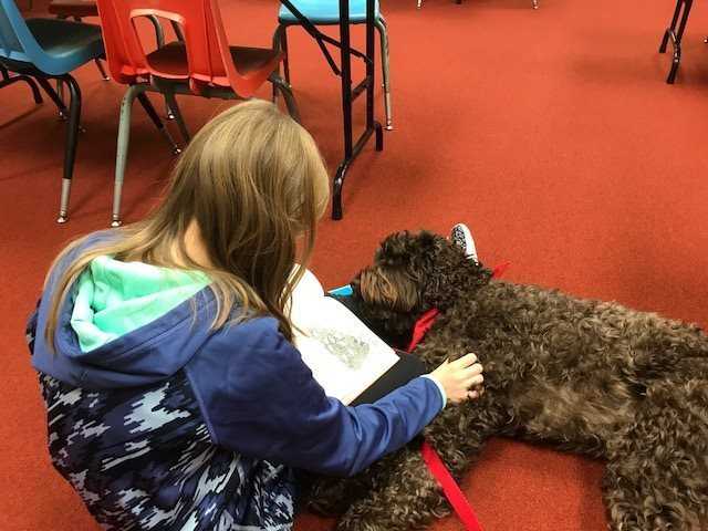 Reading with Bentley